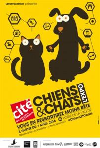 Affiche-Chiens-et-chats-480